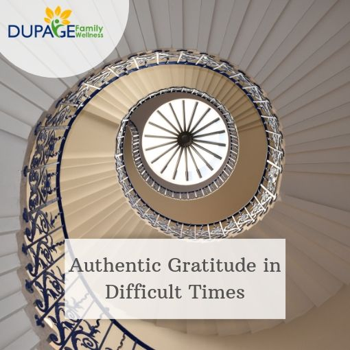 Gratitude Week 2