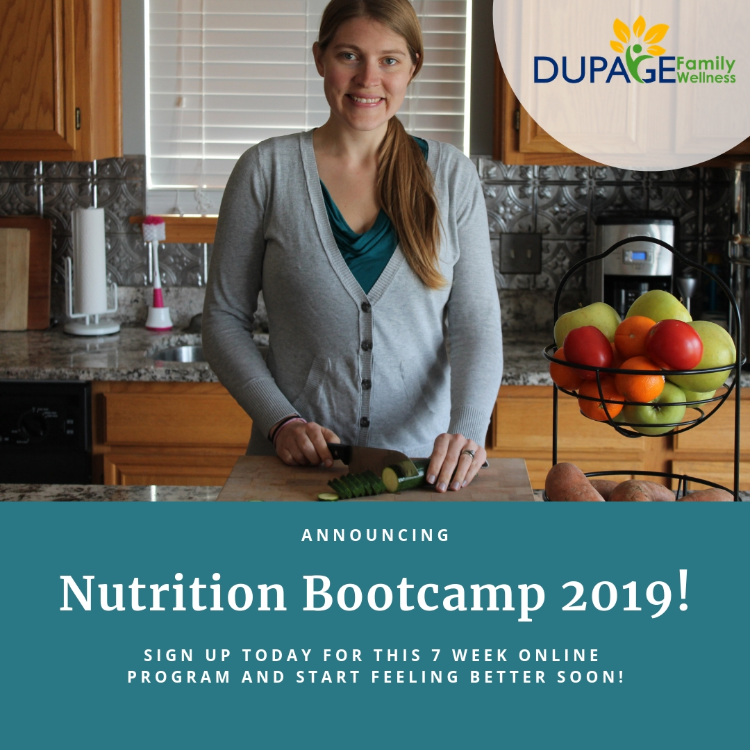 Nutrition Bootcamp 2019