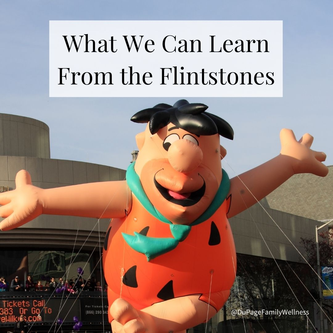 blog what we can learn form the flintstones