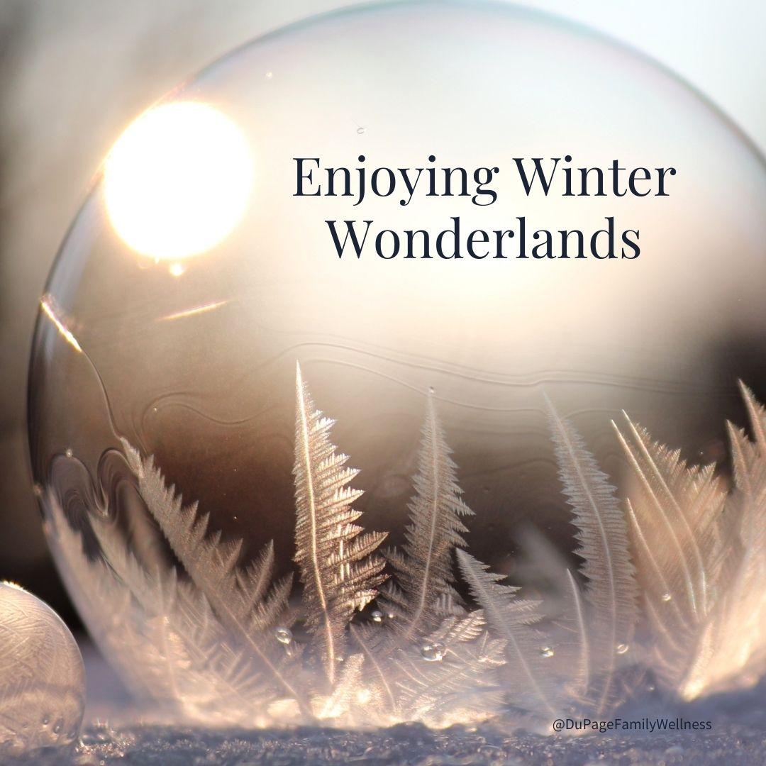 enjoying winter wonderlands