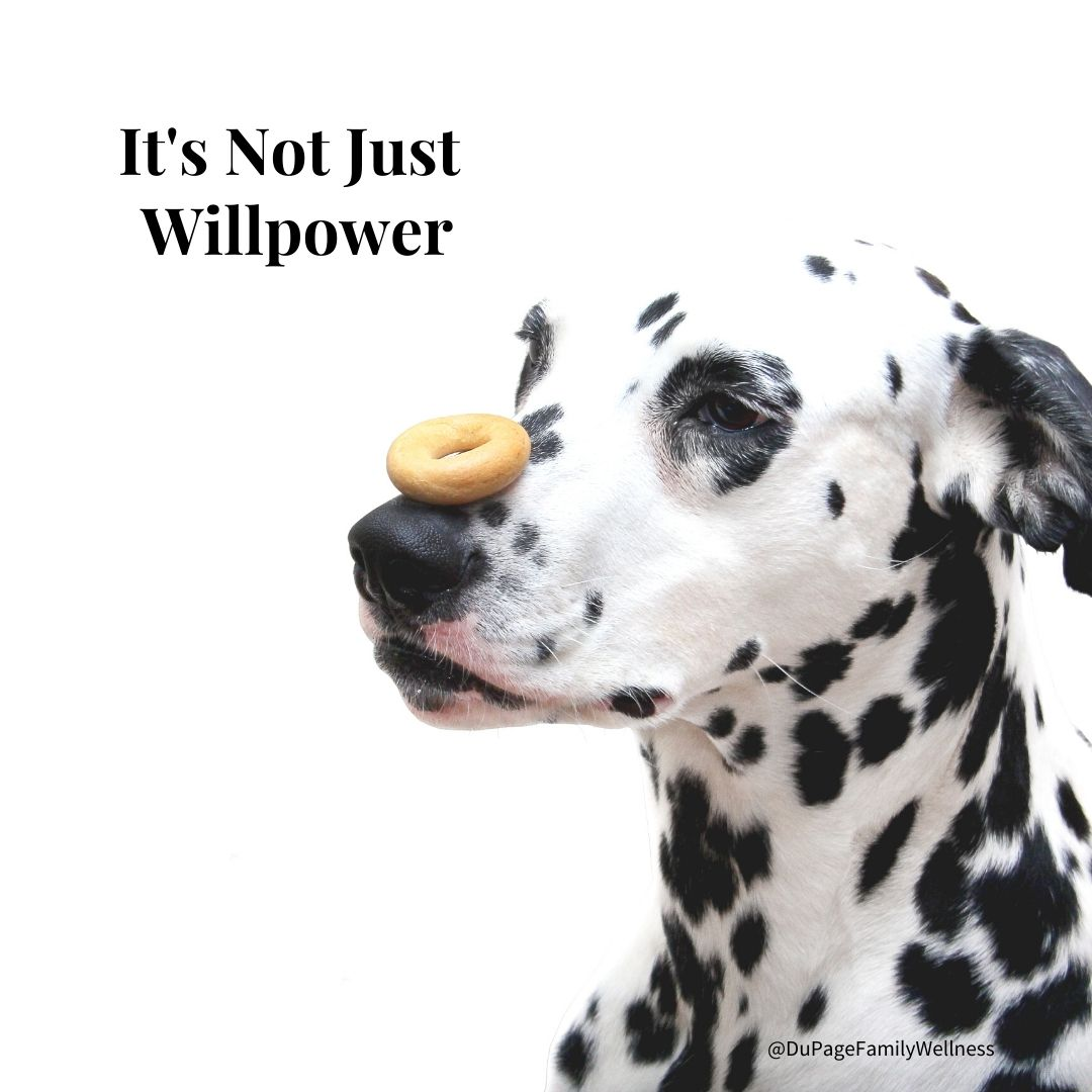 not just willpower